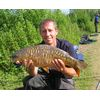 Lovely Willow Fish Maver Pairs 2008